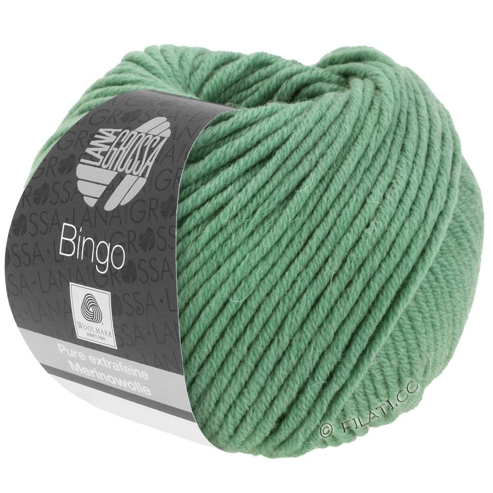 Lana Grossa BINGO  Uni/Melange | 196-grijs groen