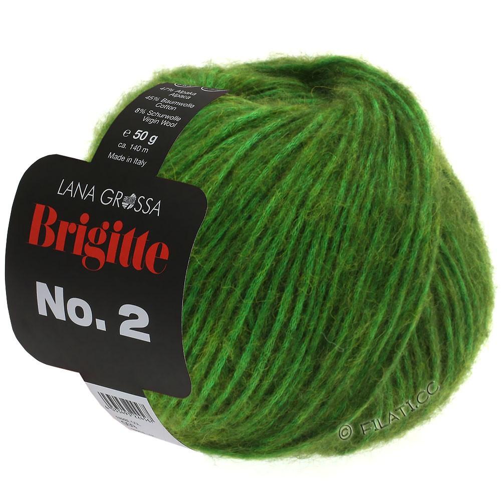 Lana Grossa BRIGITTE NO. 2   01-groen
