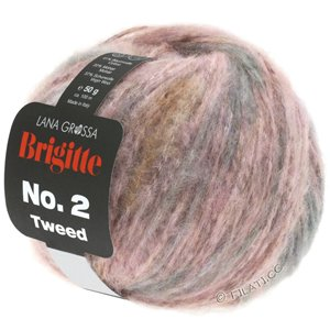Lana Grossa BRIGITTE NO. 2 Tweed | 103-rose/zand/taupe