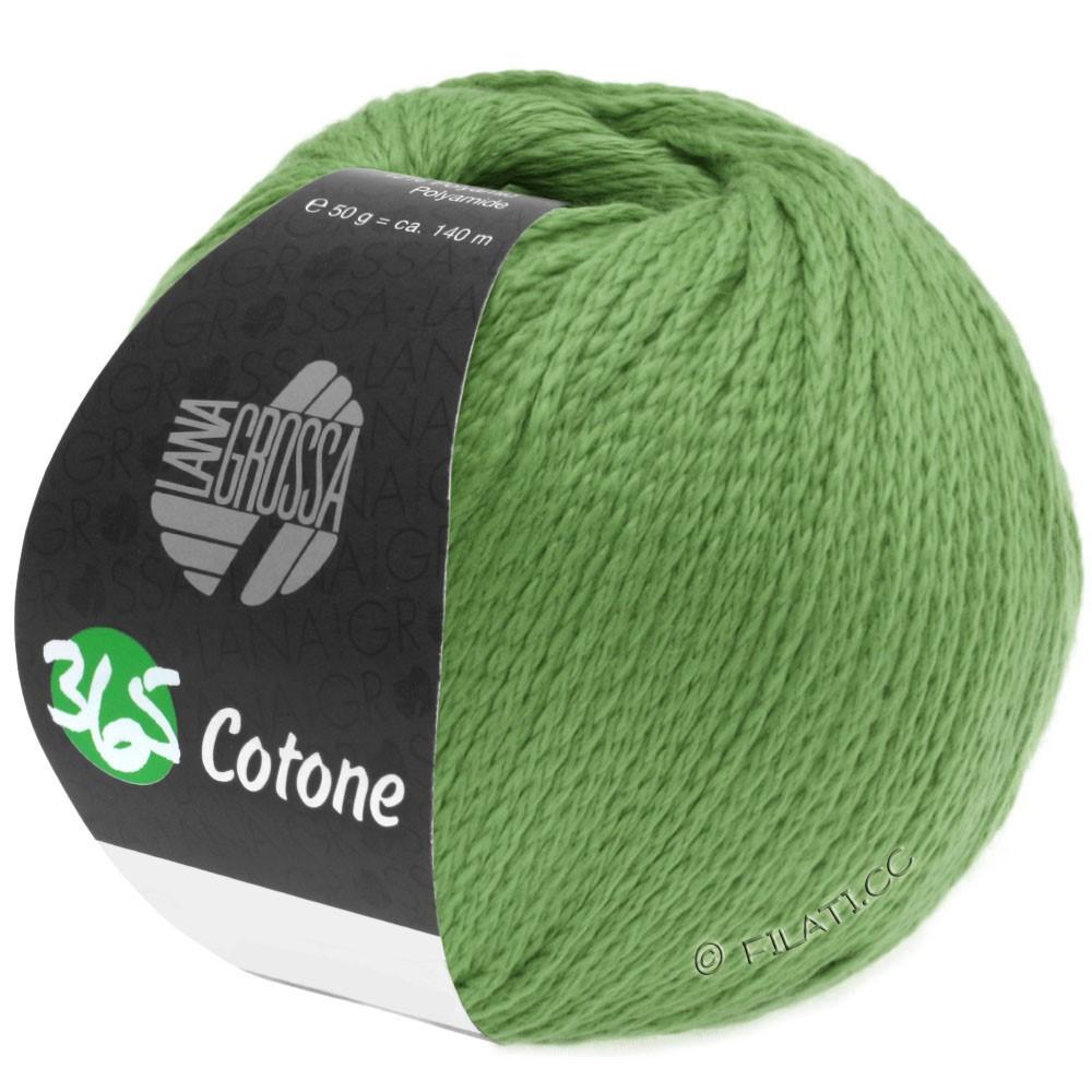 Lana Grossa 365 COTONE | 46-licht groen