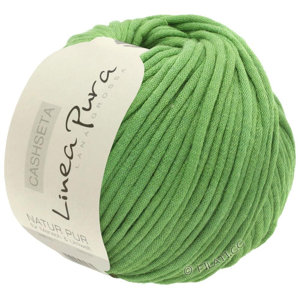 Lana Grossa CASHSETA (Linea Pura) | 01-licht groen