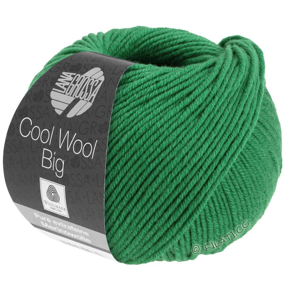 Lana Grossa COOL WOOL Big Uni/Melange/Print | 0939-donker groen