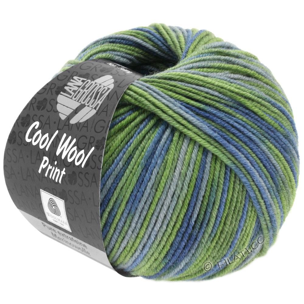 Lana Grossa COOL WOOL  Print | 800-licht blauw/resedagroen/jeans/grijs