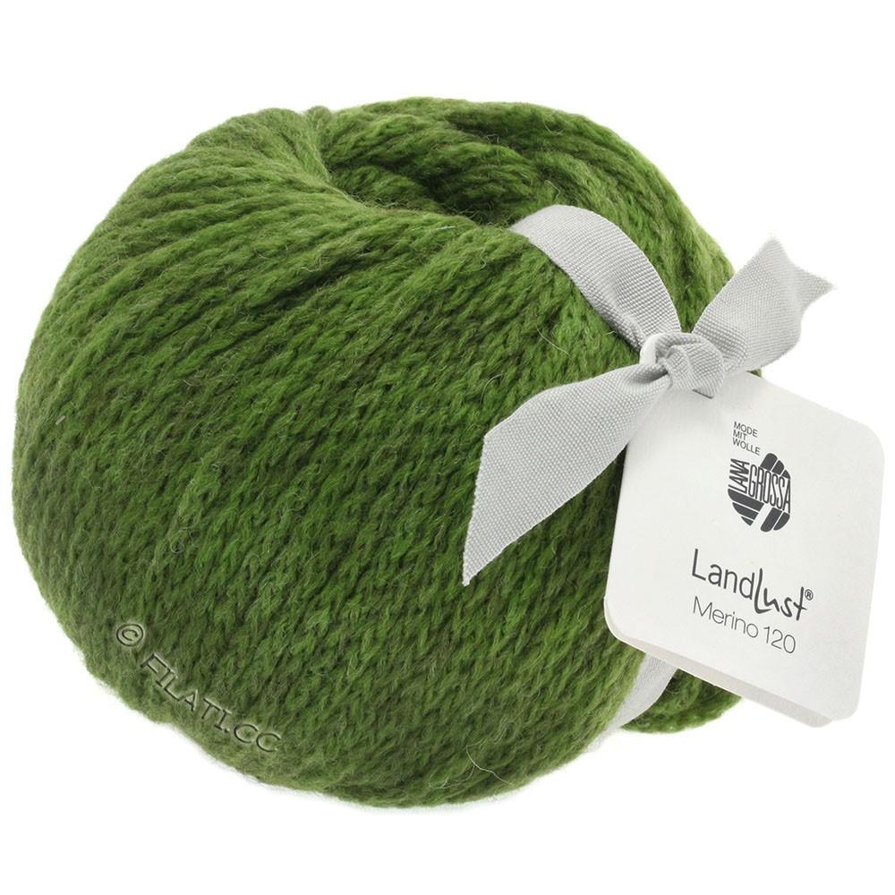 Lana Grossa LANDLUST MERINO 120 | 117-olijf groen