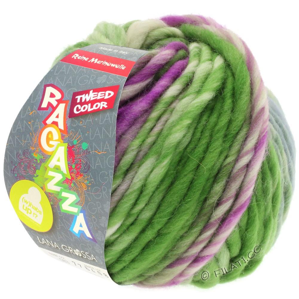 Lana Grossa LEI Tweed Color (Ragazza) | 402-blauwgrijs/groen/rood violet gemêleerd