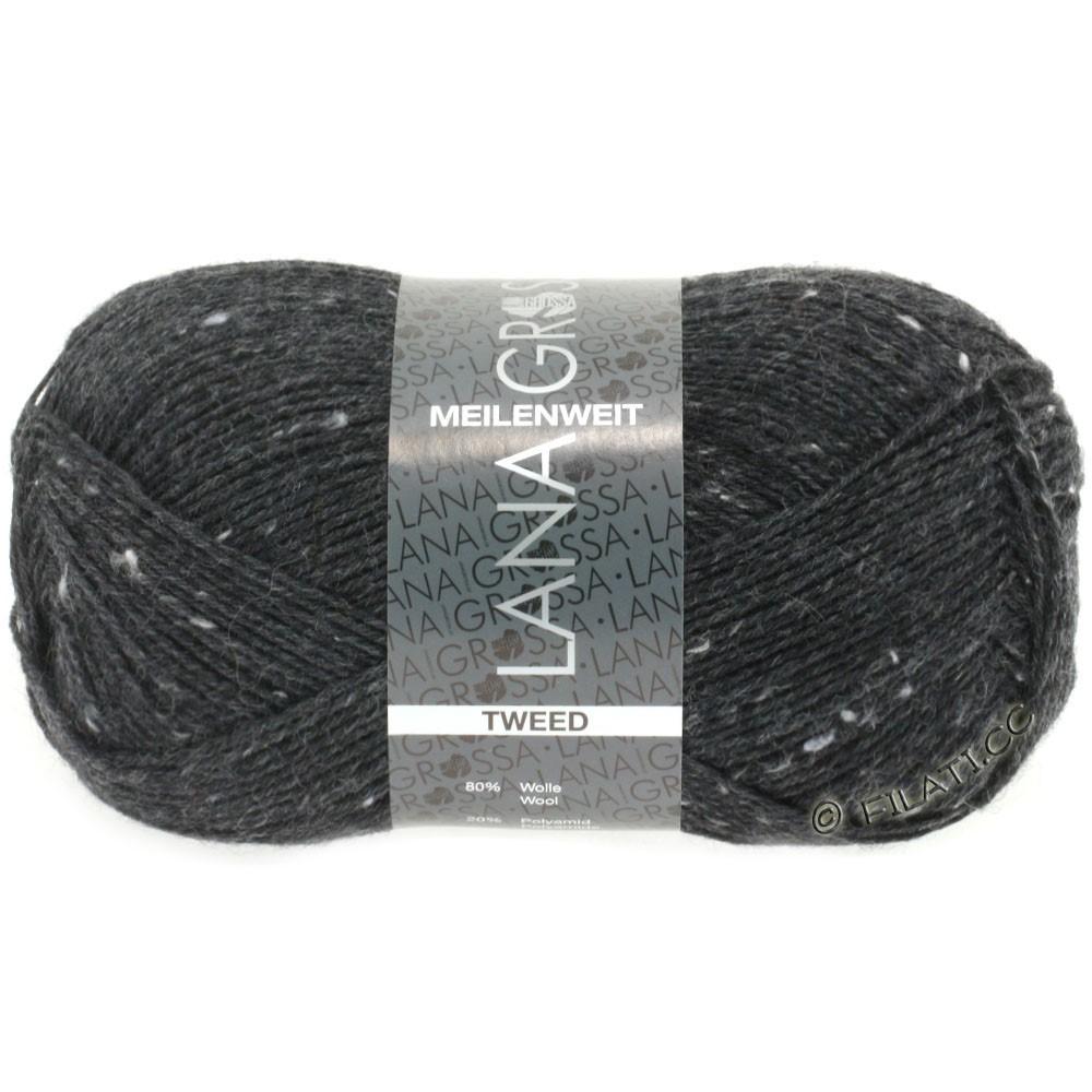 Lana Grossa MEILENWEIT 100g Tweed | 107-antraciet