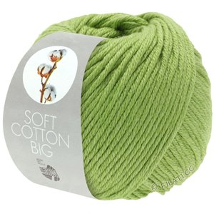 Lana Grossa SOFT COTTON Big | 11-licht groen
