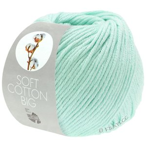 Lana Grossa SOFT COTTON Big | 15-pastelgroen